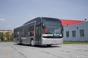 Czechowice-Dziedzice: Testy autobusu hybrydowego MAN Lion's City Hybrid