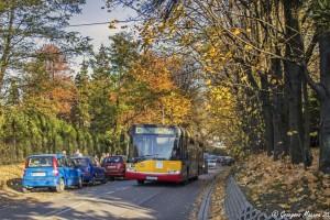 Czechowice-Dziedzice: Kursowanie autobusów we Wszystkich Świętych
