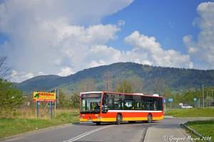 Bielsko-Biała: Nowe rozkłady jazdy dla linii nr 15 i 23